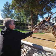 Judy Poffenbarger feeds a carrot to the giraffe