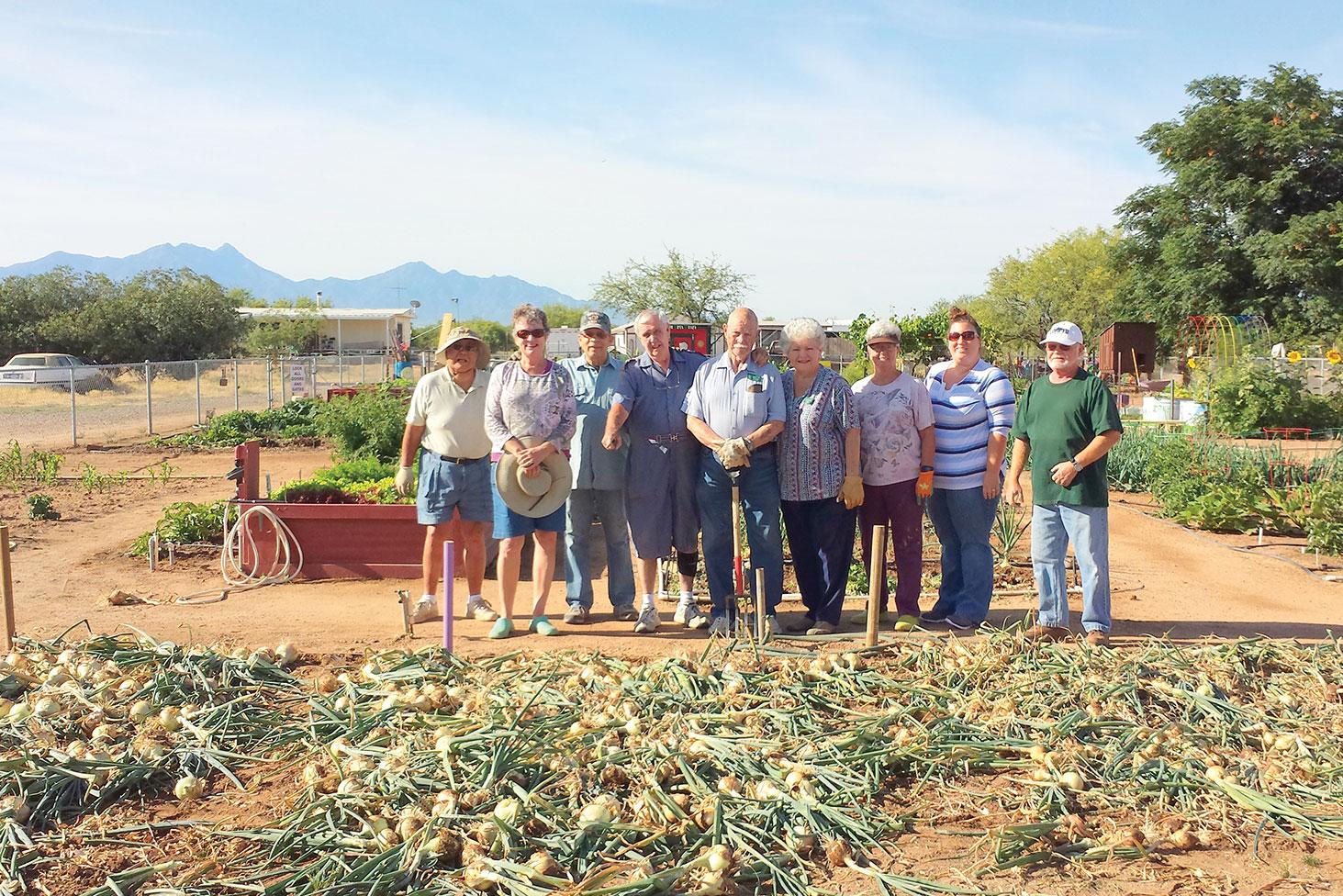 Proud Quail Creek gardeners view their bumper crop.
