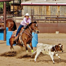 Steve Piepmeier: Roping action is fast