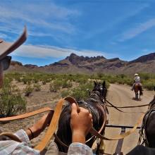 Steve Piepmeier: Riding shotgun with driver taking a wagon full of Dudes