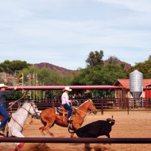 Sylvia Butler: Team roping is doubly fast.