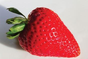 First Place (tie): Bill Martone – Strawberry