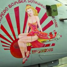 Pima Air Museum: Robert Thoresen