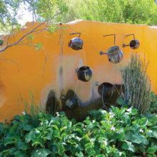 Joanna Miller: Sin Agua Garden