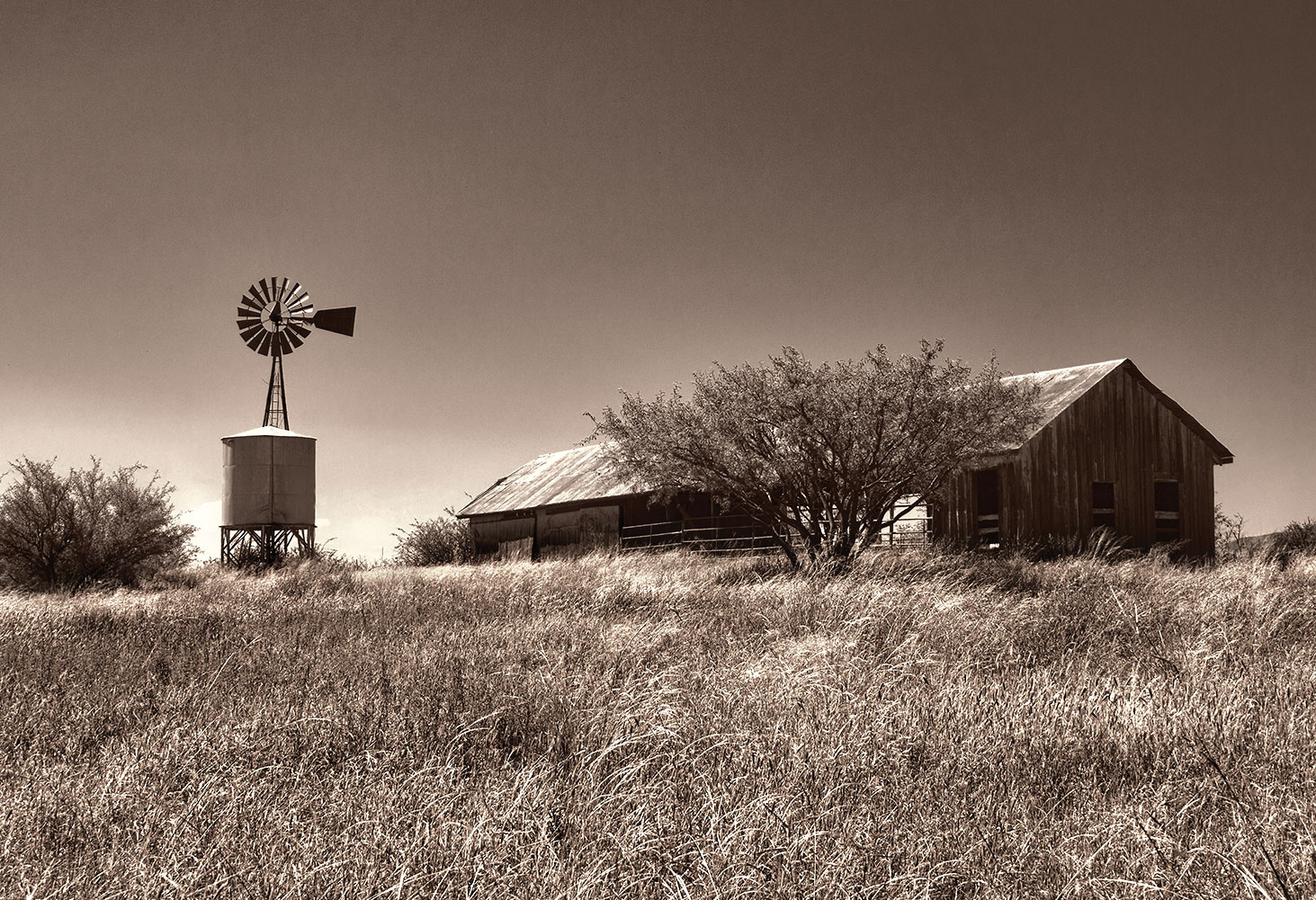 Larry Phillips first place, Empire Ranch Windmill and Barn