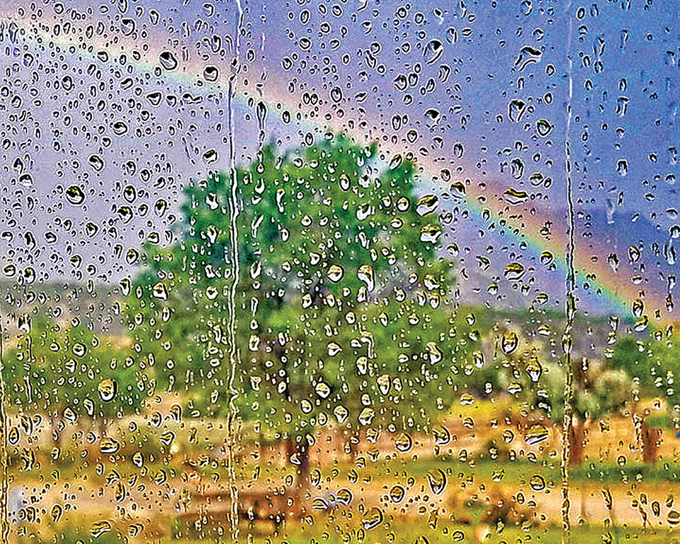 Lauren Hillquist won First Place with his photo Rainbow.