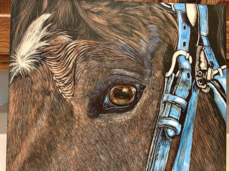 Ginny's scratchboard horse