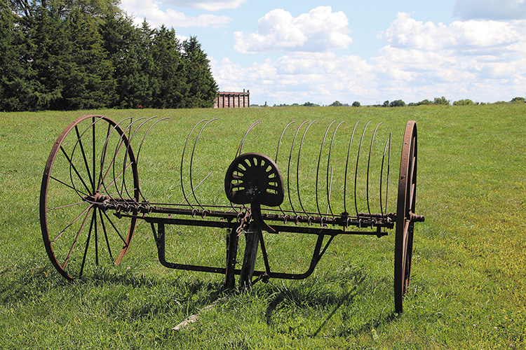 Tied for 3rd place: Antique Hay Rake