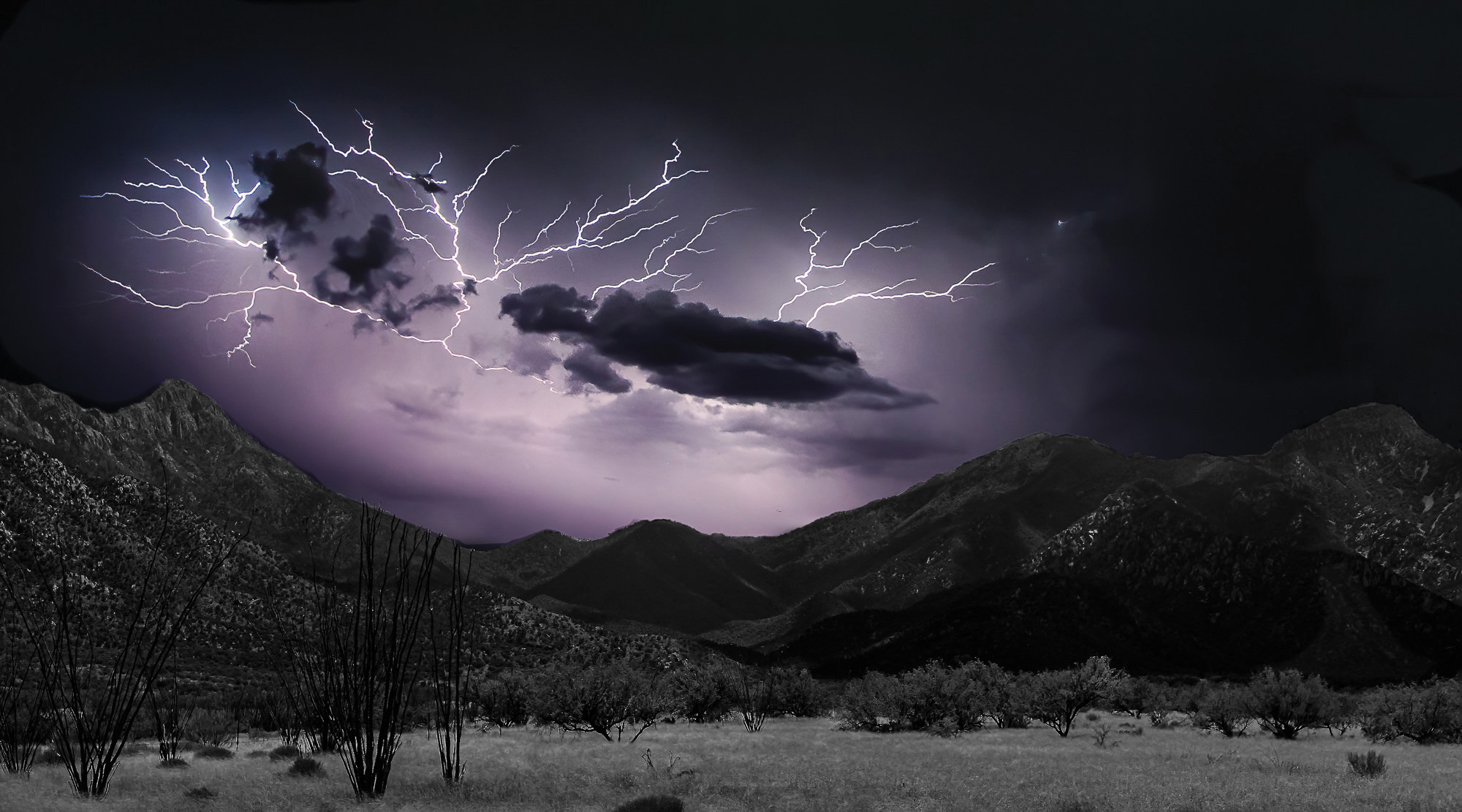 Second place, entry number 16, Greased Lightning by Jim Burkstrand