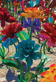 Third place, Colorful Flowers of Tubac by Deb Nesbitt
